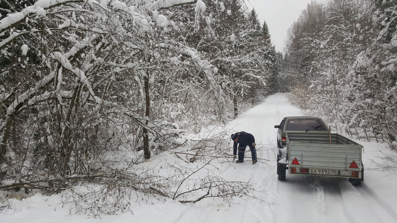 Деревья завалили всю дорогу